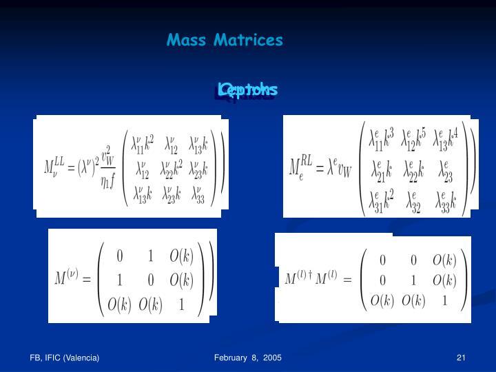 Mass Matrices