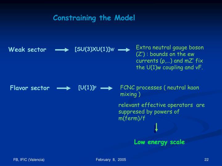 Constraining the Model