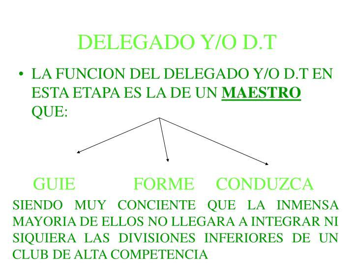 DELEGADO Y/O D.T