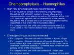 chemoprophylaxis haemophilus