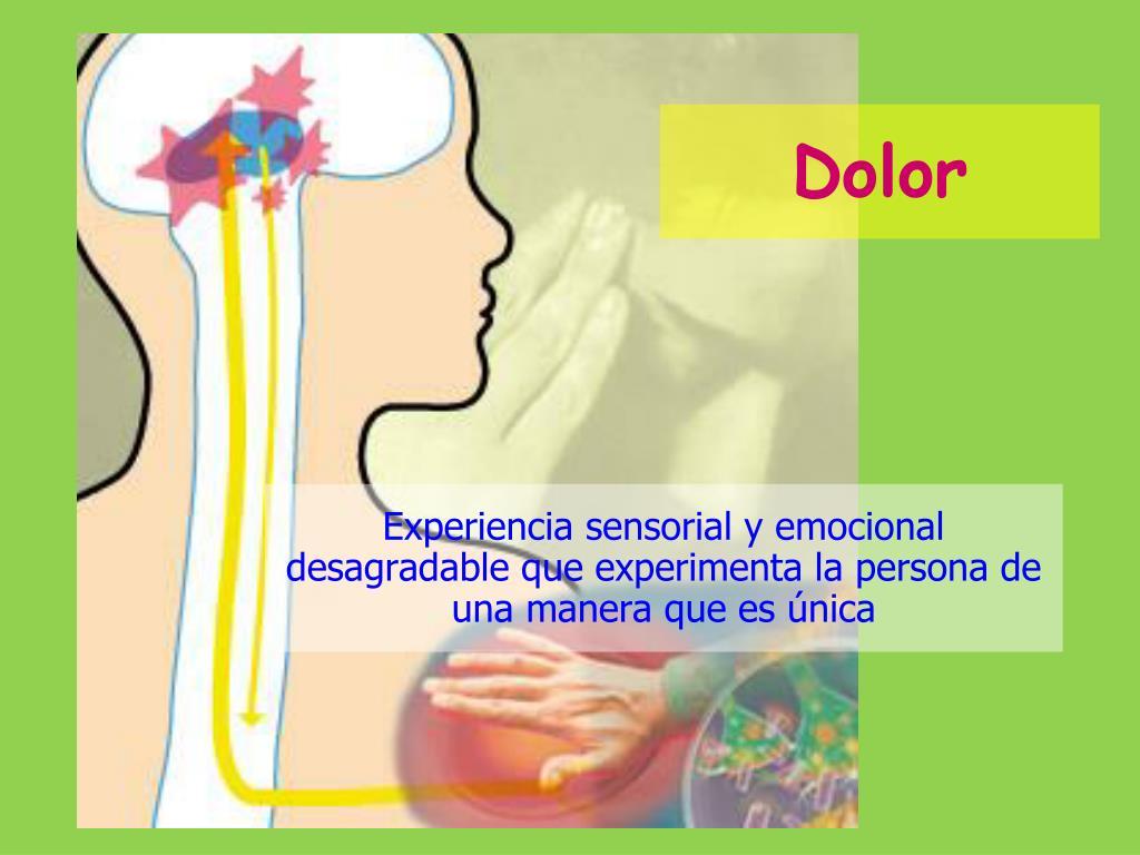PPT - Fisiología Sensorial PowerPoint Presentation, free..