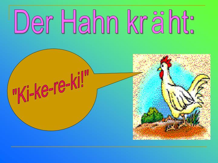 Der Hahn kr   ht: