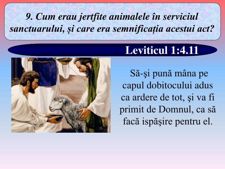9. Cum erau jertfite animalele în serviciul sanctuarului, și care era semnificația acestui act?