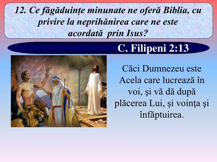 12. Ce făgăduințe minunate ne oferă Biblia, cu privire la neprihănirea care ne este