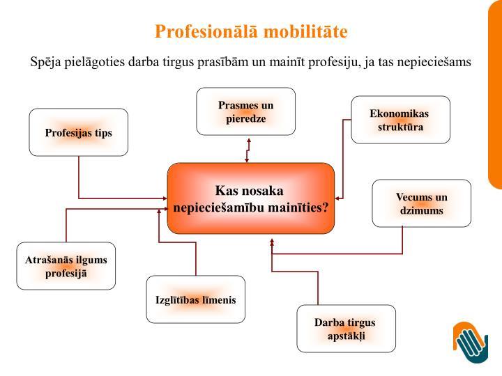 Profesionālā mobilitāte