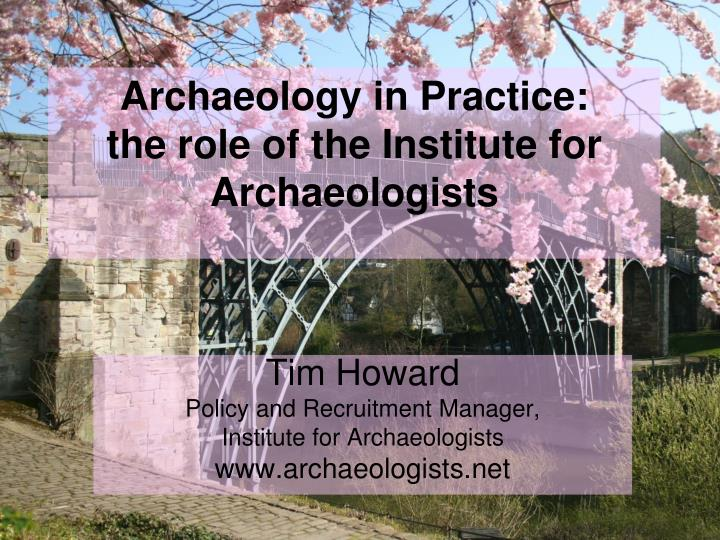 archaeology in practice the role of the institute for archaeologists n.