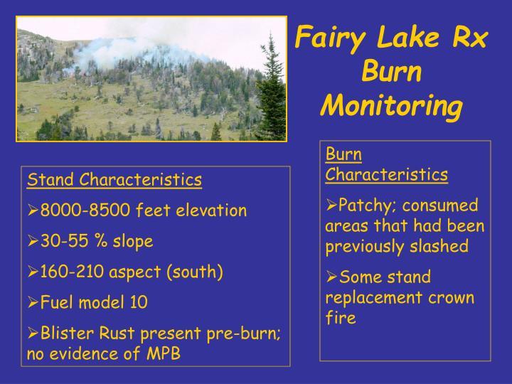 Fairy Lake Rx