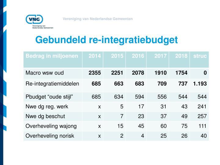 Gebundeld re-integratiebudget