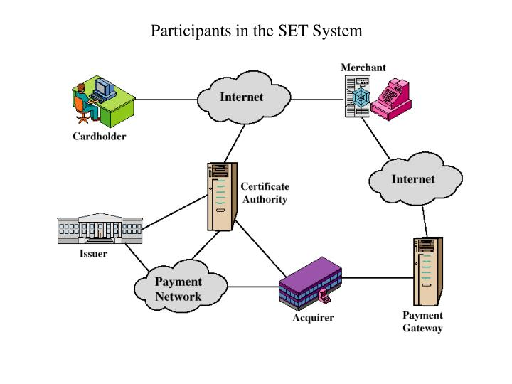 Participants in the SET System