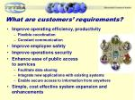 what are customers requirements