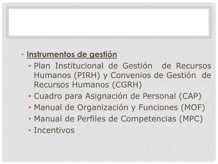 Instrumentos de gestión