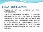 tica profesional27