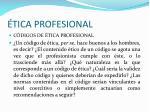 tica profesional33