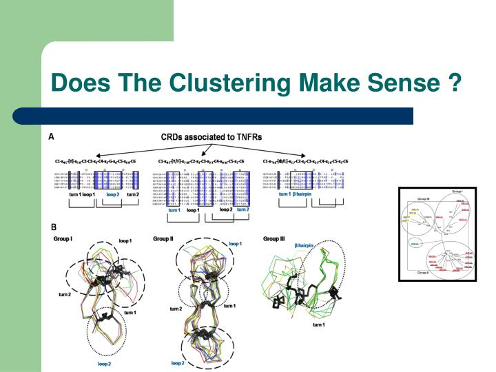 Does The Clustering Make Sense ?
