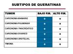 subtipos de queratinas1