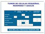 tumor de celulas peque as redondas y azules