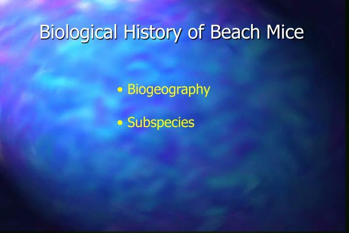 Biological History of Beach Mice