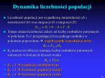 dynamika liczebno ci populacji