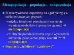 metapopulacja populacja subpopulacja