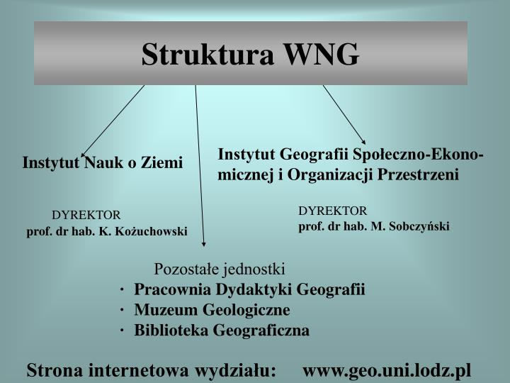 Struktura wng