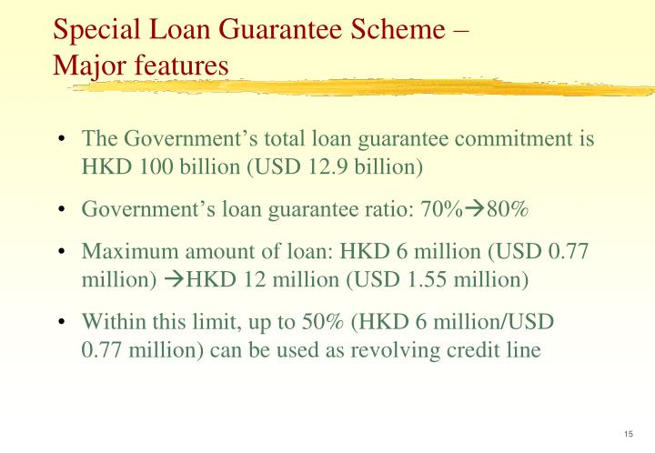 Special Loan Guarantee Scheme –