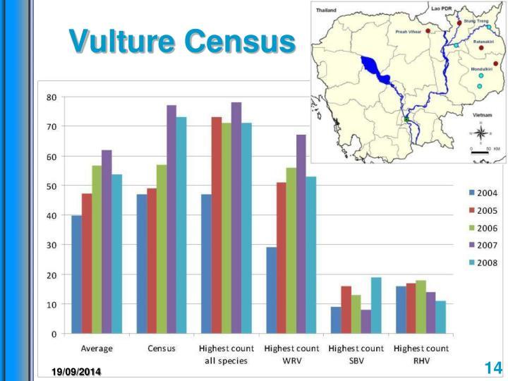 Vulture Census
