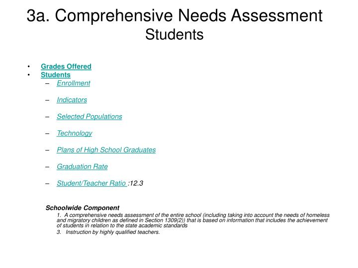 3a. Comprehensive Needs Assessment