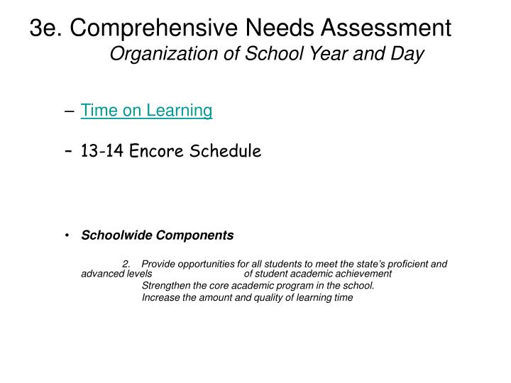 3e. Comprehensive Needs Assessment
