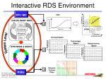 interactive rds environment