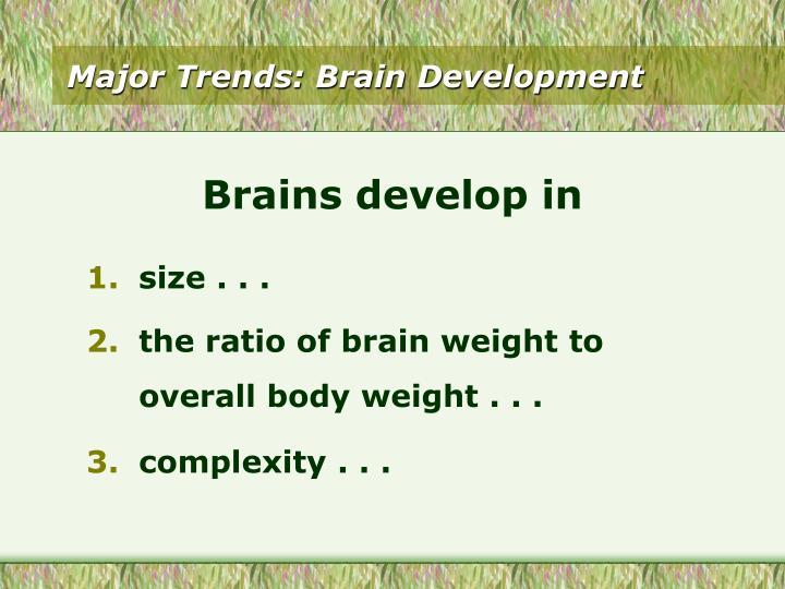 Major Trends: Brain Development