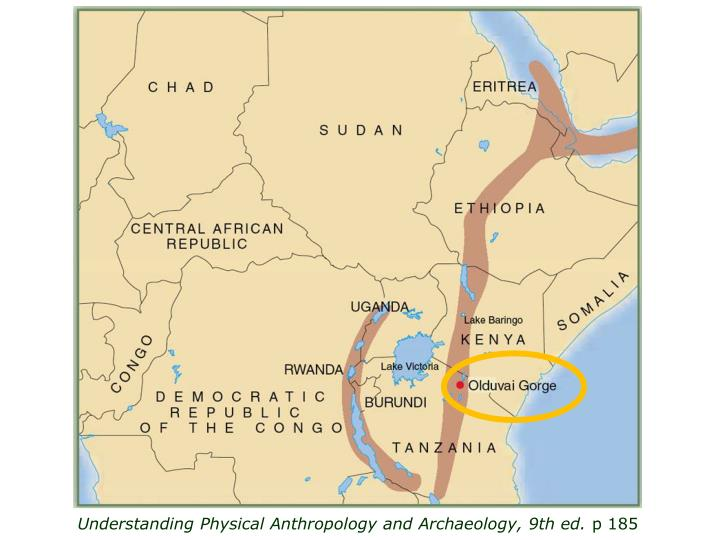 Understanding Physical Anthropology and Archaeology, 9th ed.
