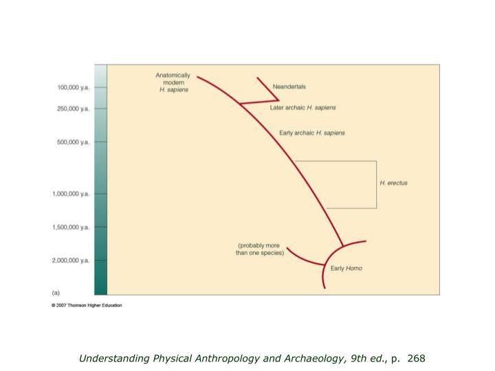 Understanding Physical Anthropology and Archaeology, 9th ed