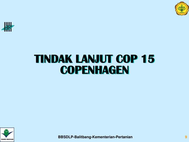 TINDAK LANJUT COP 15 COPENHAGEN