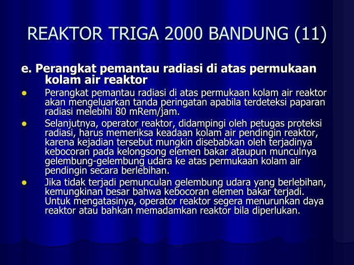 REAKTOR TRIGA 2000 BANDUNG (11)