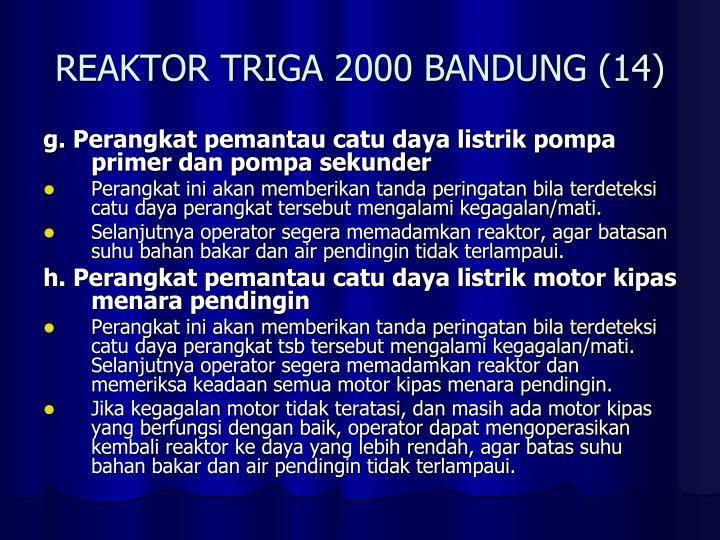 REAKTOR TRIGA 2000 BANDUNG (14)