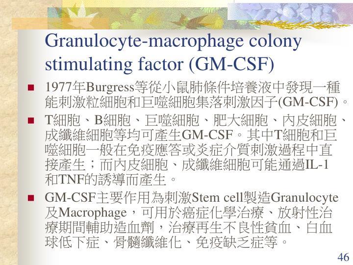 Granulocyte-macrophage colony stimulating factor (GM-CSF)
