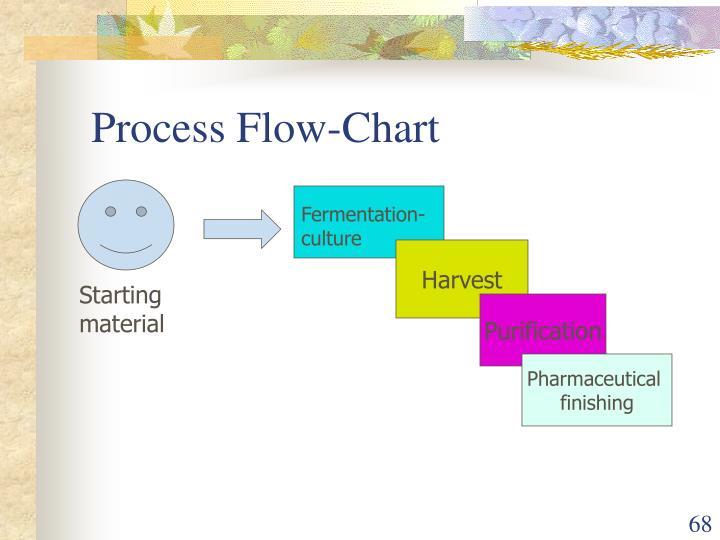 Process Flow-Chart