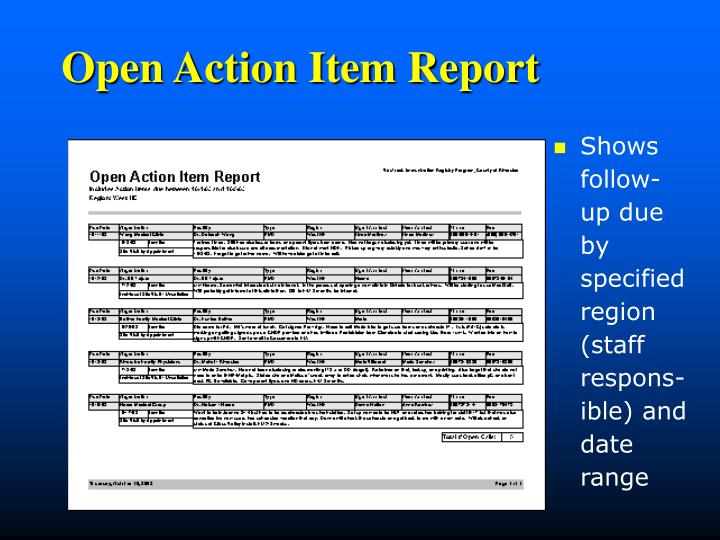 Open Action Item Report