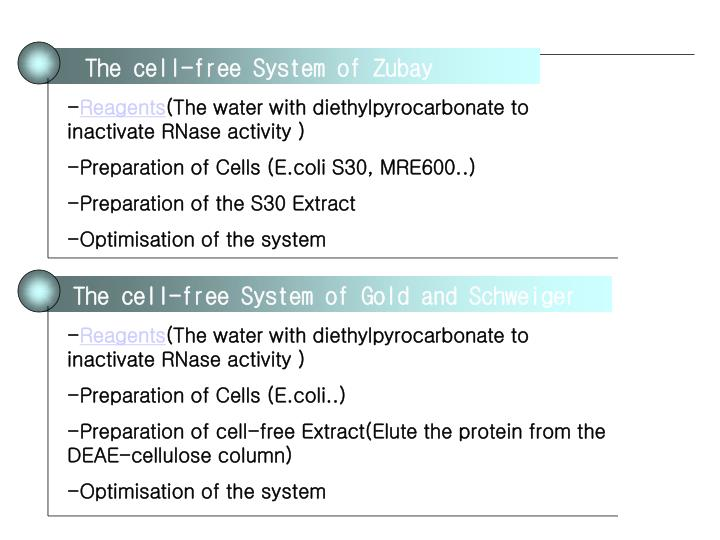 The cell-free System of Zubay