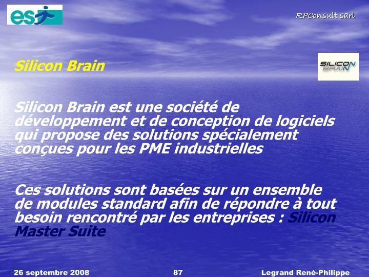 Silicon Brain