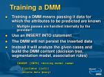 training a dmm1