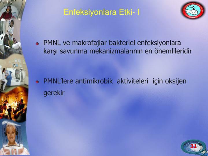 PMNL ve makrofajlar bakteriel enfeksiyonlara karşı savunma mekanizmalarının en önemlileridir