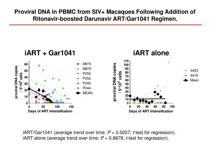 Proviral DNA in PBMC from SIV+ Macaques Following Addition of Ritonavir-boosted Darunavir ART/Gar1041 Regimen.