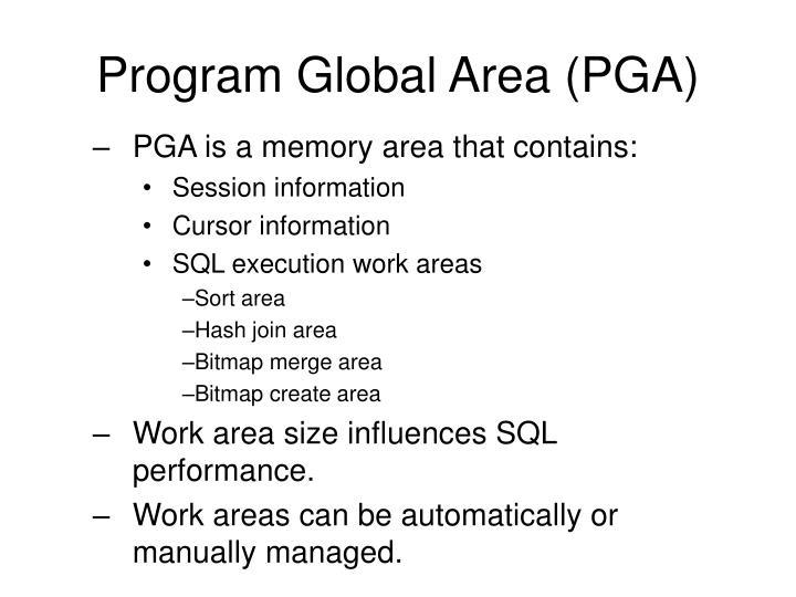 Program Global Area (PGA)