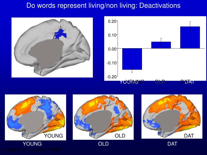 Do words represent living/non living: Deactivations