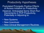 productivity hypotheses
