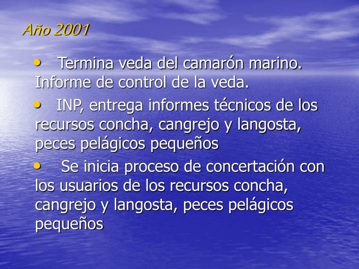 Año 2001