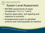 system level assessment1