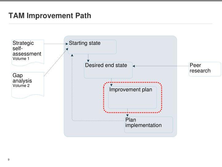 TAM Improvement Path