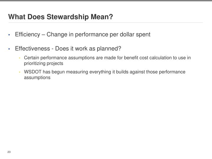 What Does Stewardship Mean?